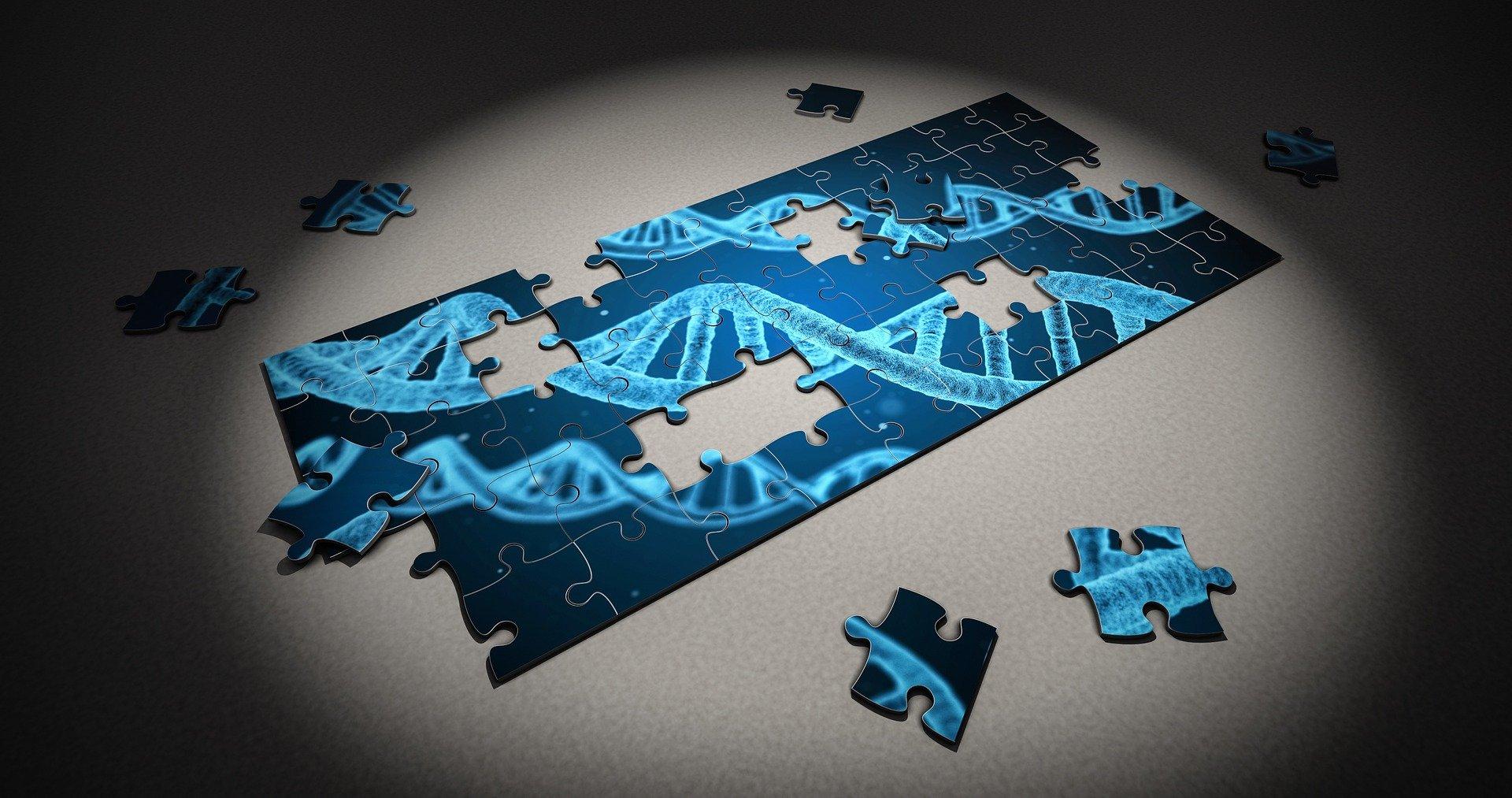 """A biotechnológia iparág közelmúltban mutatott rapszodikussága nyomán igyekeztünk górcső alá helyezni az ágazatra jellemző főbb sajátosságokat. Pár éve még elképzelhetetlennek tűnt, mára azonban valósággá vált a génterápia, valamint az emberi DNS feltérképezése. Az ilyen feladatot végző cégek a biotechnológia iparágába tartoznak. A biotechnológia élőlények segítségével végzett kutatásokat jelent, amelynek segítségével új tulajdonsággal rendelkező sejtek vagy élőlények hozhatók létre; főként molekuláris és sejtbiológiai eszközökön keresztül. Az iparágon belül a génterápia számos érdekes lehetőséggel kecsegtet, de az elérhető siker óriási kockázatot rejt magában. 2017. augusztus 30-án az USA Élelmiszerbiztonsági és Gyógyszerészeti Hivatala (FDA) engedélyezte a Novartis és a Pennsylvaniai Egyetem fejlesztését, amely során génterápiával nagy eséllyel gyógyítani tudják a fiatalkori leukémia egyik fajtáját. Az FDA maga is történelmi jelentőségűnek nevezte a sejtterápiás eljárást. A fenti döntés előtt két nappal a Gilead Sciences 11,9 milliárd dollártért megvette az amerikai Kite Pharmát, amely hasonló eljáráson dolgozik, azzal a különbséggel, hogy az már nem csak fiataloknak, hanem felnőtteknek is elhozza a gyógyulás lehetőségét. Ezzel pedig elindult a nagy cégek által a génterápiával foglalkozó kutatócégek - mondhatni start-upok – felvásárlásának hosszú sora: a Juno Therapeutcs-et felvásárolta a Celgene, amit aztán a Bristol-Myers; a Novatis a Vedere-t és az AveXis-t; a Sanofi a Kiadis-t, a Roche a Spark Technologies-t. A sor végeláthatatlan. A génterápia utóbbi években történő előretörését az is segítette, hogy a génállomány feltérképezése az évek során egyre olcsóbbá vált. 20 év alatt 100 millió dollárról ezer dollár közelébe csökkent az eljárás ára. Ellenben egy rendkívül bonyolult tudományról van szó, elég csak az """"öröklés-környezet vitára"""" gondolni. Azaz még ma sincs egyértelmű álláspont arról, hogy az ember tulajdonságai, hajlamai (például betegségre) genetikai tény"""
